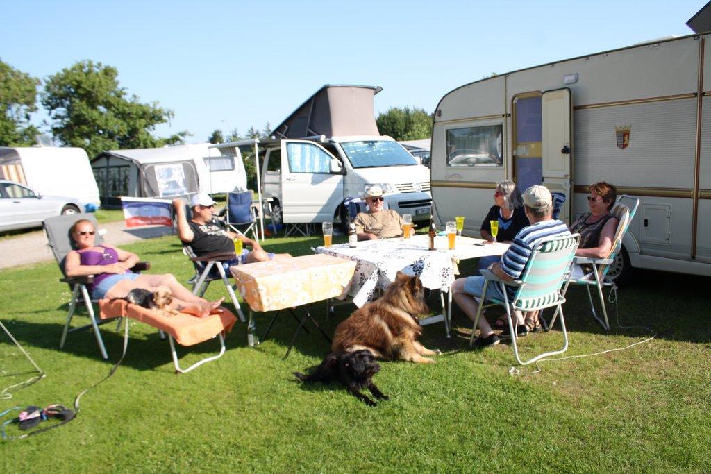 Camping Silbermöwe: Urlaub mit Hund