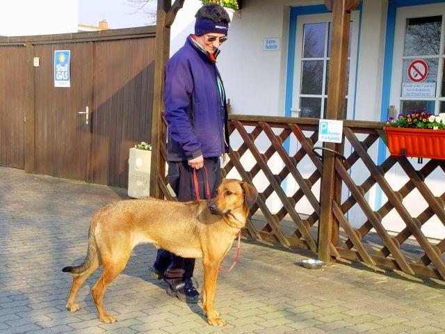 St. Peter-Ording Camping mit Hund: Camping Silbermöwe Hundeparkplatz